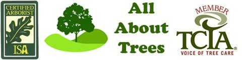 ISA certified arborist TCIA member